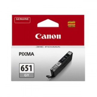 Canon Ink CLI651 Grey