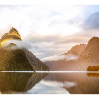 """Milford Sound Framed Canvas Art 52""""X19"""""""