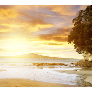 "Rangitoto Island Framed Canvas Art 59""X17"""