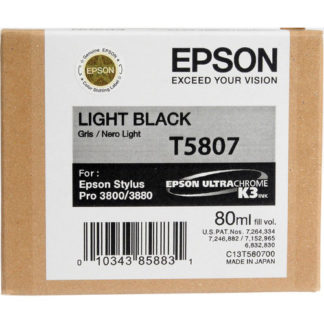 Epson Ink T5087 Light Black