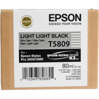 Epson Ink T5089 Light Light Black